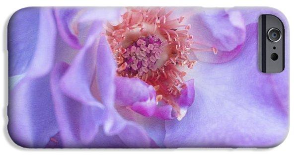 Floribunda iPhone Cases - Rhapsody in Blue iPhone Case by Irina Wardas