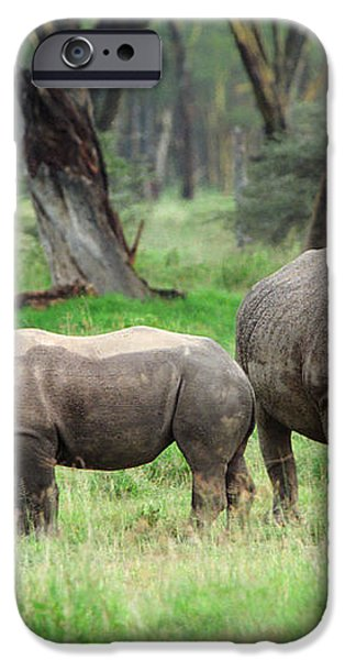 Rhino Family iPhone Case by Sebastian Musial