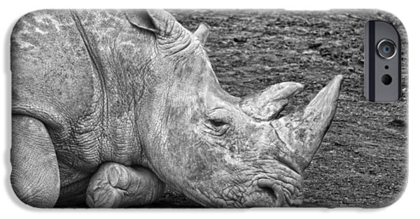Rhinocerus iPhone Cases - Rhinoceros iPhone Case by Nancy Aurand-Humpf