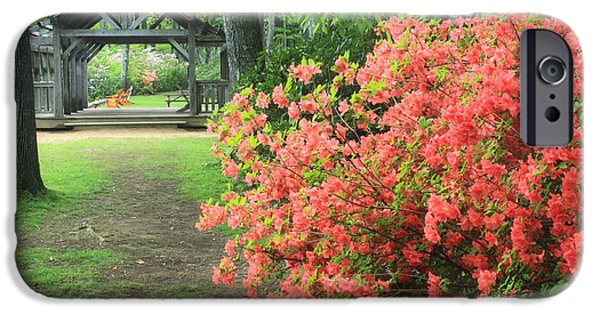 Covered Bridge iPhone Cases - Rhododendron and Covered Bridge Moore State Park iPhone Case by John Burk