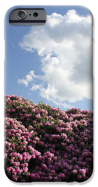 Rhododendron iPhone Case by Melissa Petrey
