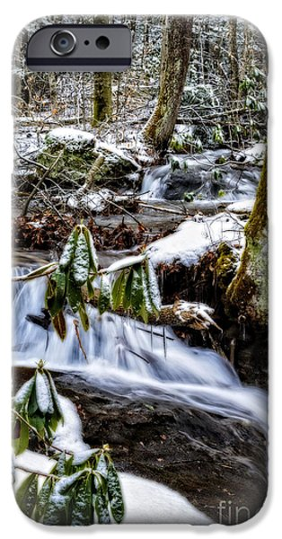 Oak Creek iPhone Cases - Rhododendron Waterfall Winter iPhone Case by Thomas R Fletcher