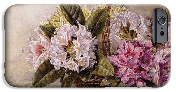 Weave iPhone Cases - Rhododendrons Wc On Paper iPhone Case by English School