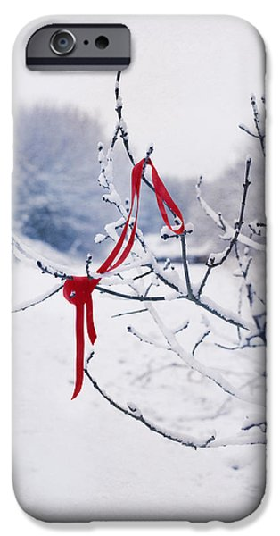 Ribbon In Tree iPhone Case by Amanda And Christopher Elwell