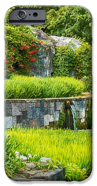 Interior Scene iPhone Cases - Rice Garden iPhone Case by Wim Lanclus