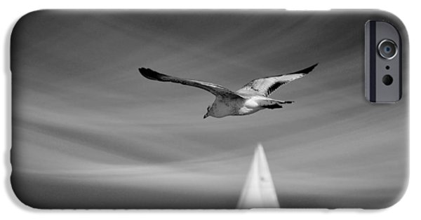 Seagull iPhone Cases - Ride The Wind iPhone Case by Laura  Fasulo