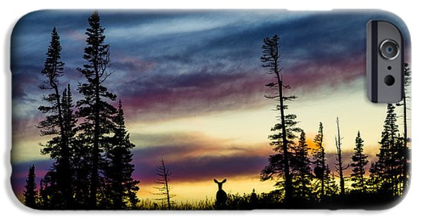 Pines iPhone Cases - Ridge Sihouette iPhone Case by Chad Dutson