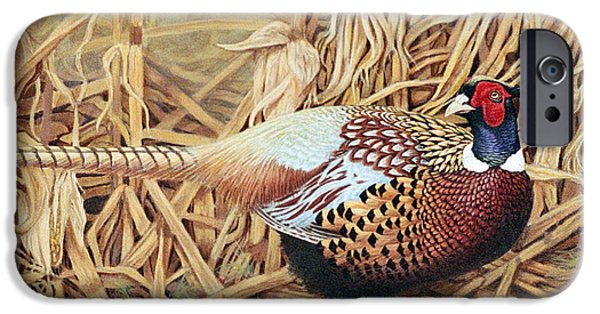 Affordable iPhone Cases - Ring-necked Pheasant iPhone Case by Ken Everett