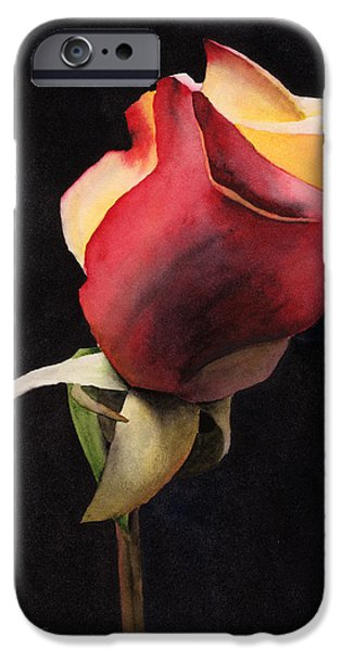 Alizarin Crimson iPhone Cases - Rio Samba ReVisited iPhone Case by Ken Powers
