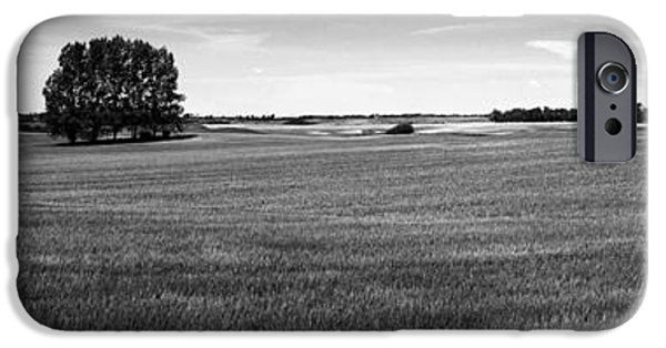Interior Scene iPhone Cases - ripening wheat field under blue sky BW iPhone Case by Donald  Erickson