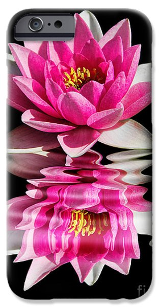 Fauna iPhone Cases - Ripples in Time iPhone Case by Mariola Bitner