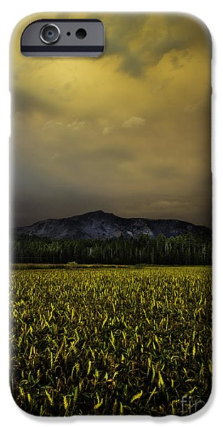 Unset iPhone Cases - Risk And Reward iPhone Case by Mitch Shindelbower