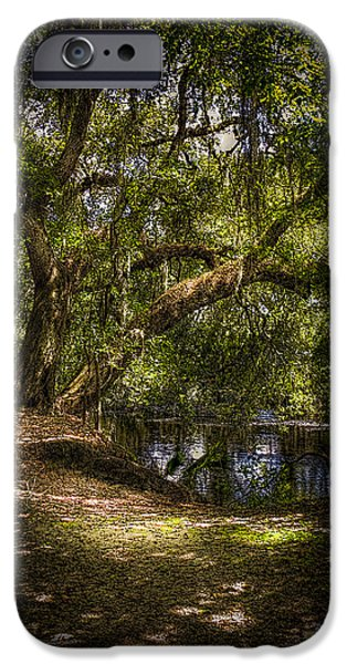 Tree Roots Photographs iPhone Cases - River Oak iPhone Case by Marvin Spates