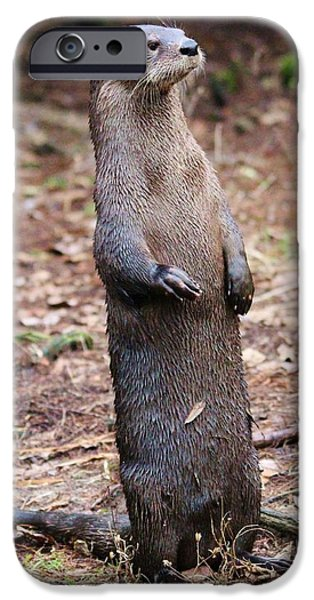 Otter Digital Art iPhone Cases - River Otter iPhone Case by Paulette Thomas