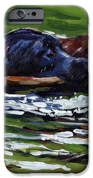 River Run iPhone Case by Molly Poole
