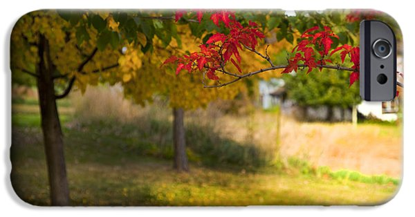 Autumn In The Country iPhone Cases - Riverbend Orchard iPhone Case by Theresa Tahara