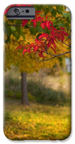 RIVERBEND ORCHARD iPhone Case by Theresa Tahara
