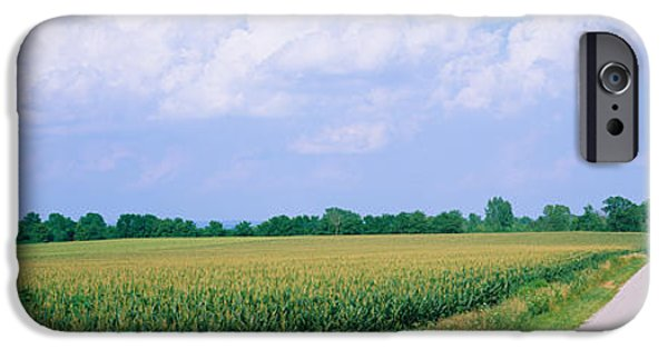 Crops iPhone Cases - Road Along Corn Fields, Jo Daviess iPhone Case by Panoramic Images