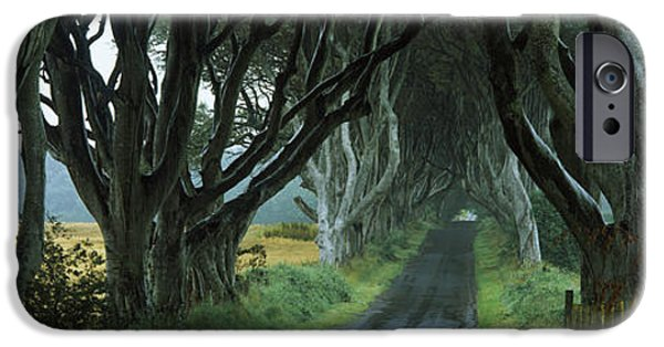 The Way Forward iPhone Cases - Road At The Dark Hedges, Armoy, County iPhone Case by Panoramic Images