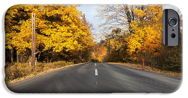 Asphalt iPhone Cases - Road In Autumn Forest iPhone Case by Michal Boubin