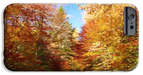 Asphalt Paintings iPhone Cases - Road in autumn wood iPhone Case by Lanjee Chee