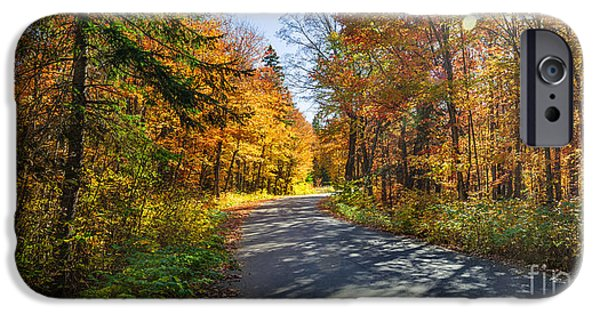 Autumn Road iPhone Cases - Road in fall forest iPhone Case by Elena Elisseeva