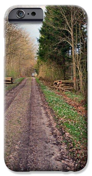 Asbjorn Lonvig Digital iPhone Cases - Road in Stakrode Forest iPhone Case by Asbjorn Lonvig