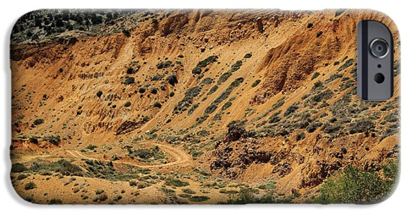 Take The High Road iPhone Cases - Road Less Traveled iPhone Case by Scott Hill