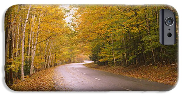 Maine Roads iPhone Cases - Road Passing Through A Forest, Park iPhone Case by Panoramic Images