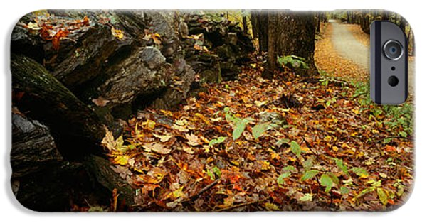 New Hampshire Fall Scenes iPhone Cases - Road Passing Through A Forest, White iPhone Case by Panoramic Images