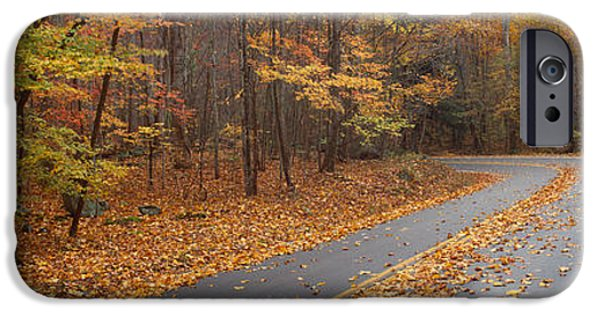 Fall iPhone Cases - Road Passing Through Autumn Forest iPhone Case by Panoramic Images