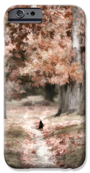Fall Scenes iPhone Cases - Road To Autumn iPhone Case by Gothicolors Donna Snyder