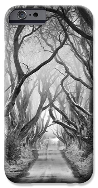 Tree Art Print iPhone Cases - Road to dream iPhone Case by Pawel Klarecki