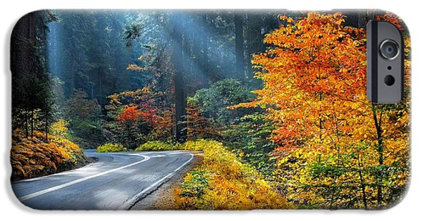 Autumn Road iPhone Cases - Road to Glory  iPhone Case by Lynn Bauer
