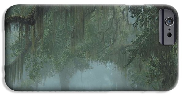 Glynn iPhone Cases - Road to Righteousness iPhone Case by Laura Ragland