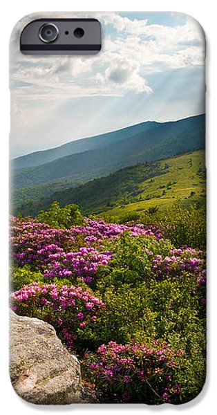 Roan Mountain from Appalachian Trail near Jane's Bald iPhone Case by Dave Allen