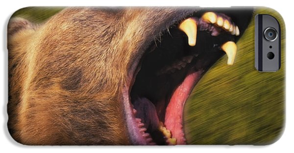 Growling iPhone Cases - Roaring Grizzly Bears Face Rocky iPhone Case by Thomas Kitchin & Victoria Hurst