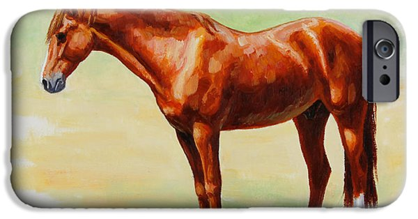 Chestnut Horse iPhone Cases - Roasting Chestnut - Morgan Horse iPhone Case by Crista Forest