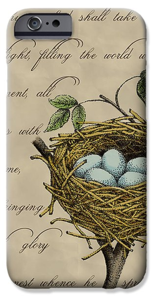 Nest iPhone Cases - Robins Nest iPhone Case by Christy Beckwith