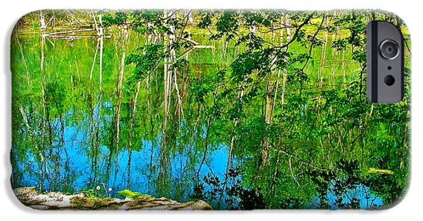 Near Natchez Trace Parkway iPhone Cases - Rock and Spring on Rock Spring Trail near Natchez Trace Parkway-Alabama  iPhone Case by Ruth Hager