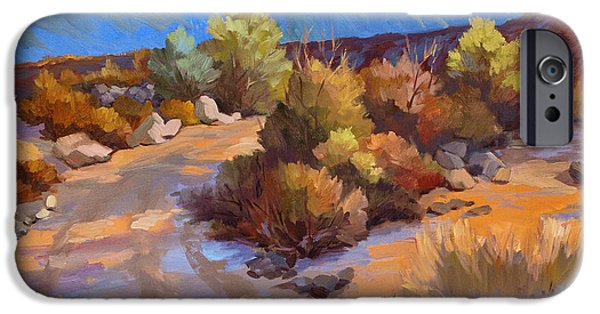 Plein Air iPhone Cases - Rock Cairn at La Quinta Cove iPhone Case by Diane McClary