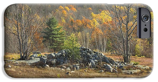 Blueberry iPhone Cases - Rock Pile In Maine Blueberry Field iPhone Case by Keith Webber Jr