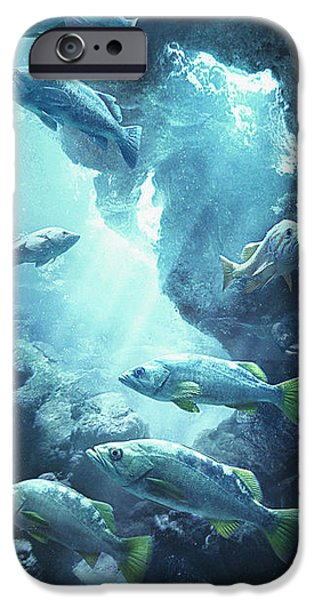 Sports Fish iPhone Cases - Rockfish Sanctuary iPhone Case by Javier Lazo
