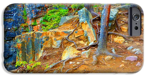 Tree Roots Mixed Media iPhone Cases - Rocks and Root iPhone Case by John Kreiter