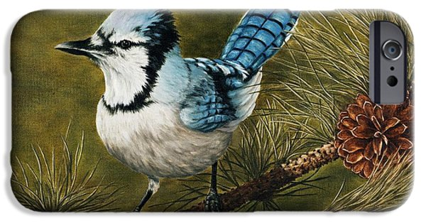 Blue Jay iPhone Cases - Rocky Mountain Morning iPhone Case by Rick Bainbridge