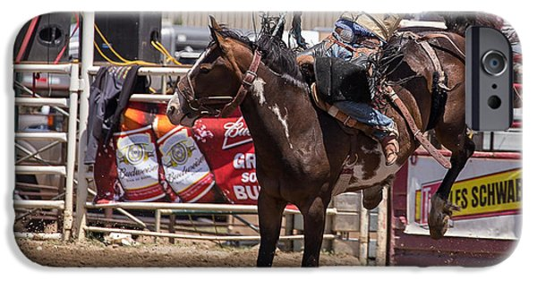 Animals Photographs iPhone Cases - Rodeo 2 iPhone Case by Mike Turner
