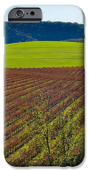 Rolling Hills and Vineyards iPhone Case by CML Brown