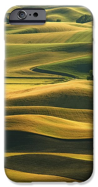 Contour Farming iPhone Cases - Rolling Hills of the Palouse iPhone Case by Latah Trail Foundation