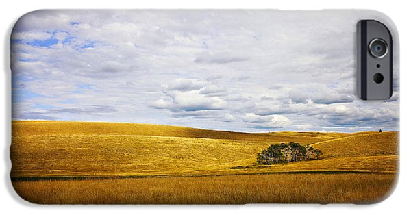 Prairie Landscape iPhone Cases - Rolling Prairie iPhone Case by Theresa Tahara