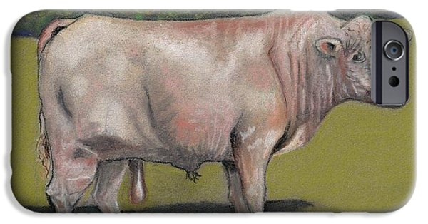 Bulls Pastels iPhone Cases - Rolling R Big Man Charolais Bull iPhone Case by Chris Bajon Jones